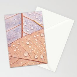 Waterdrops on Magnolia Leaves  Stationery Cards