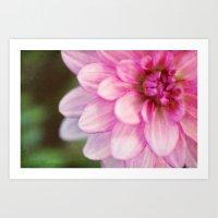 dahlia Art Prints featuring dahlia by Beverly LeFevre