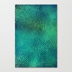 FluO scales Canvas Print