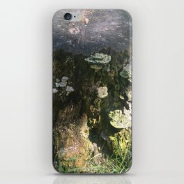 forest field iPhone Skin