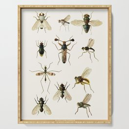Insects Serving Tray