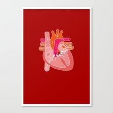 Heart Diagram Canvas Print
