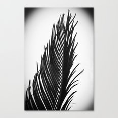 Palm: The Abstract in Black Canvas Print