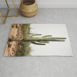 Arizona's Cactus Rug