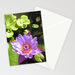 Purple Lilly Stationery Cards