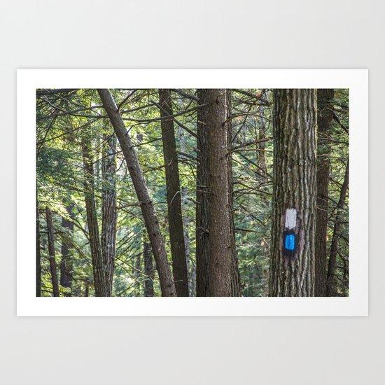 Trail Marker Among Trees Art Print