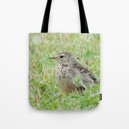 Pipit on the Lawn Tote Bag