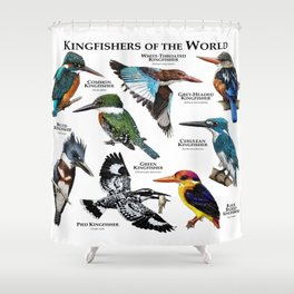 Kingfishers of the World Shower Curtain