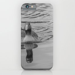 Greylag goose swimming along the River Bure, Horning iPhone Case