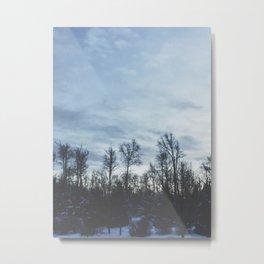 Wintery Hue Metal Print