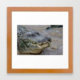 Wild Everglades Framed Art Print