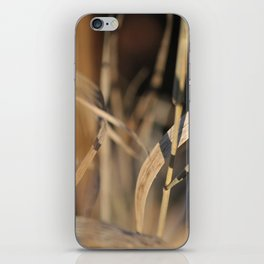 Whispering Grass iPhone Skin
