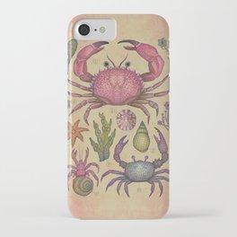 Aequoreus vita I / Marine life I iPhone Case