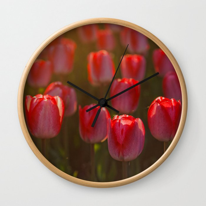 Tulips spring Wall Clock