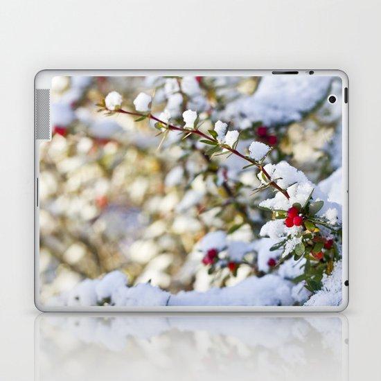 Sweet winter Laptop & iPad Skin