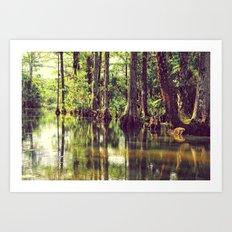 The River of Grass Art Print