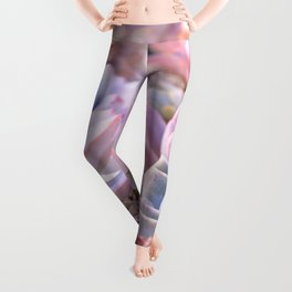PASTEL SUCCULENTS Leggings