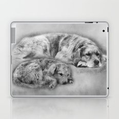 Golden Retriever young and old Laptop & iPad Skin