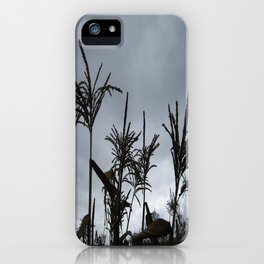 Dusk on the Island iPhone Case