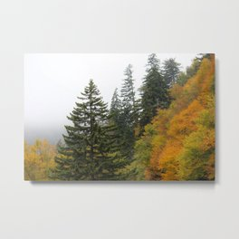 Fall in the Great Smoky Mountains Metal Print