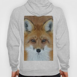 I can see into your soul Hoody