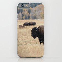 Grand Teton Bison Photography Print iPhone Case