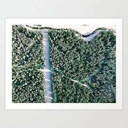 Trees below Art Print