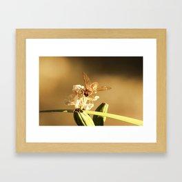 Cicada Hornet on Iris in Sepia Framed Art Print