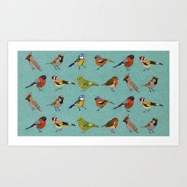 British Garden Birds - Blue Art Print
