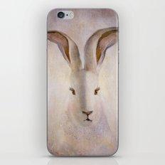 Madame Rabbit iPhone & iPod Skin