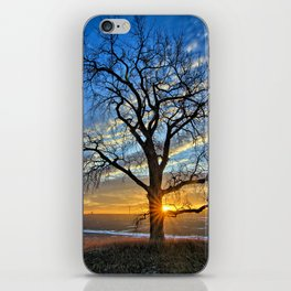 Sunburst Cottonwood iPhone Skin