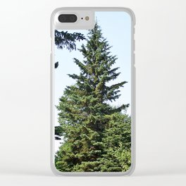 Evergreen Trees so Green Clear iPhone Case