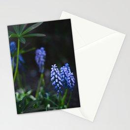 Night Garden Stationery Cards