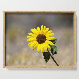 Yellow Daisy Photograph Serving Tray