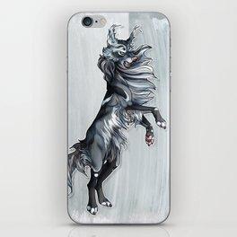 Windrunner iPhone Skin