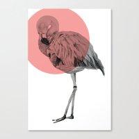 flamingo Canvas Prints featuring flamingo by morgan kendall