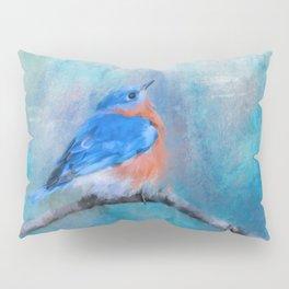 Little Boy Blue Pillow Sham