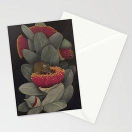 Honey Possum Stationery Cards