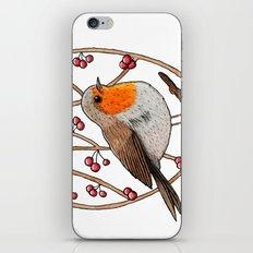 Christmas winter robin iPhone & iPod Skin
