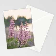 Summer eve by the lake Stationery Cards