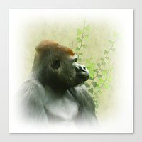 ape Canvas Prints featuring Ape by Shalisa Photography