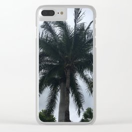 Messico palme Clear iPhone Case