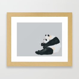 Taking break after a tiring day pretending to eat bamboo in front of humans. Framed Art Print