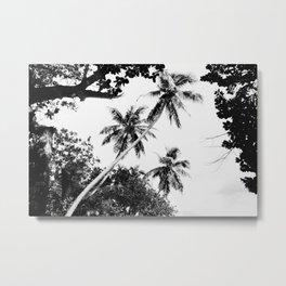 Cave trees Metal Print