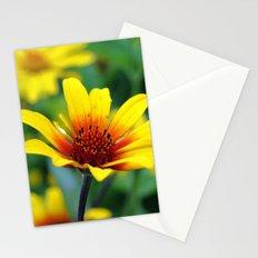 Prairie Flower Stationery Cards