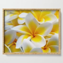 Frangipani halo of flowers Serving Tray