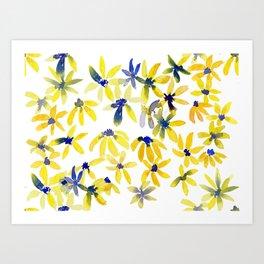 Blue Eyed Susan Art Print