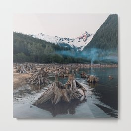 A Stumpy Morning - British Columbia, Canada Metal Print
