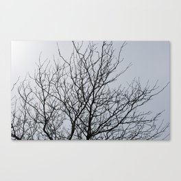 Ahollowness Canvas Print