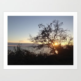 Edge of Seattle tree sunset Art Print